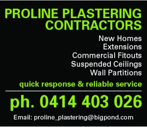 Proline Plaster_advert